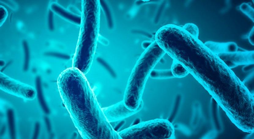 UNE publica nueva norma examen microorganismos agua