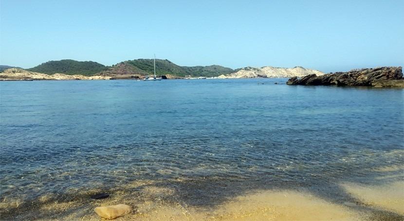 """"""" modificación procesos biogeoquímicos nitrógeno deterioran ecosistemas costeros"""""""