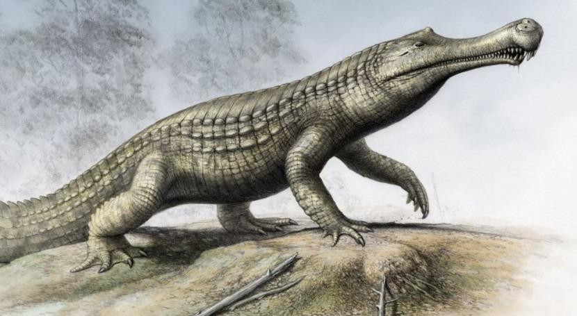 enfriamiento clima y cambios nivel mar extinguieron especies crocodilios