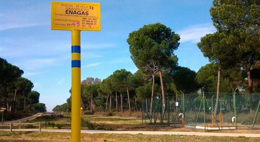 suspensión proyecto almacenamiento gas Doñana que solició Ecologistas, desestimada