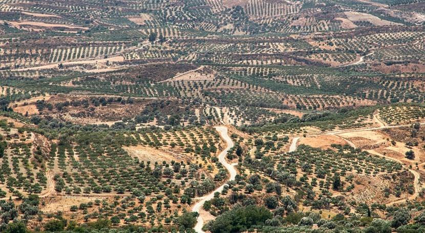 Grecia paga cara desprotección aguas frente contaminación nitratos