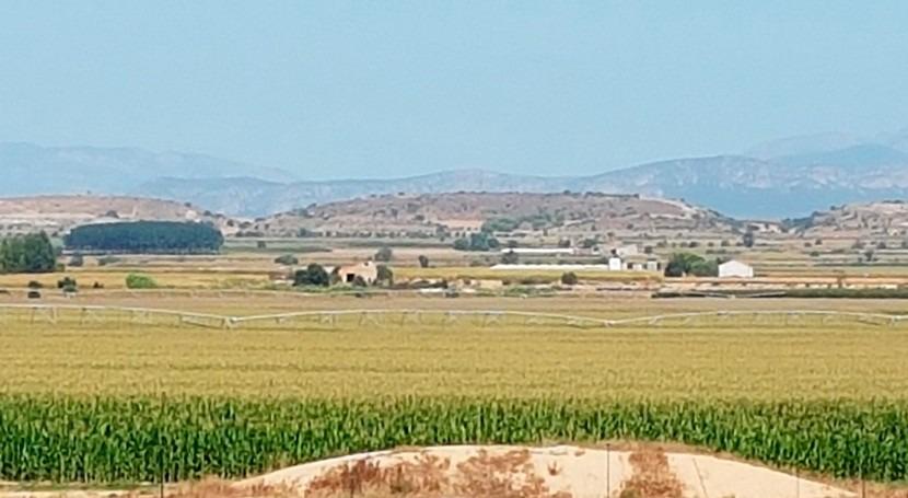 Sistemas riego e índice vigor (NDVI) cultivo maíz