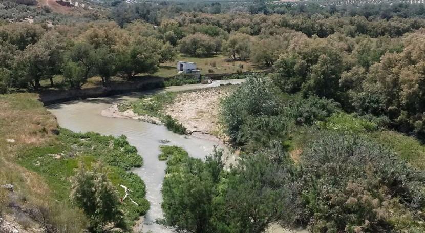 CHG busca medidas evitar muerte peces sequía río Guadalbullón