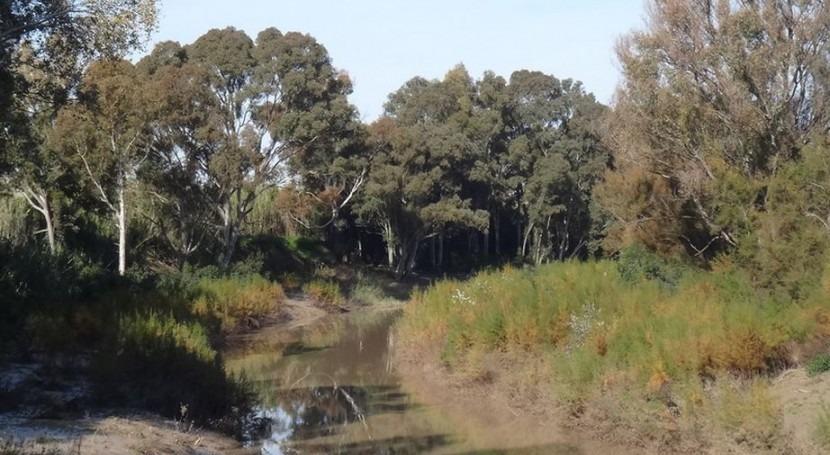 Río Guadalete (Wikipedia/CC).