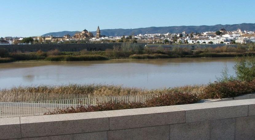 CHG licita más millón recuperación entorno Guadalquivir Córdoba