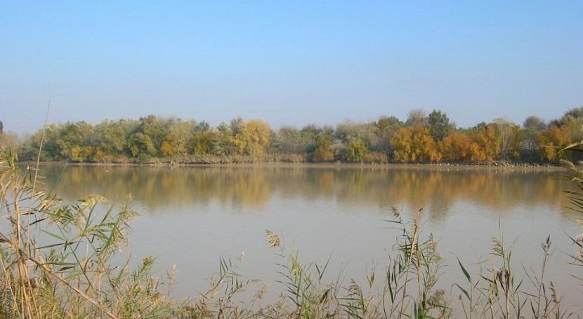 MITECO destina 17 millones euros mejorar canales zonas regables Guadalquivir