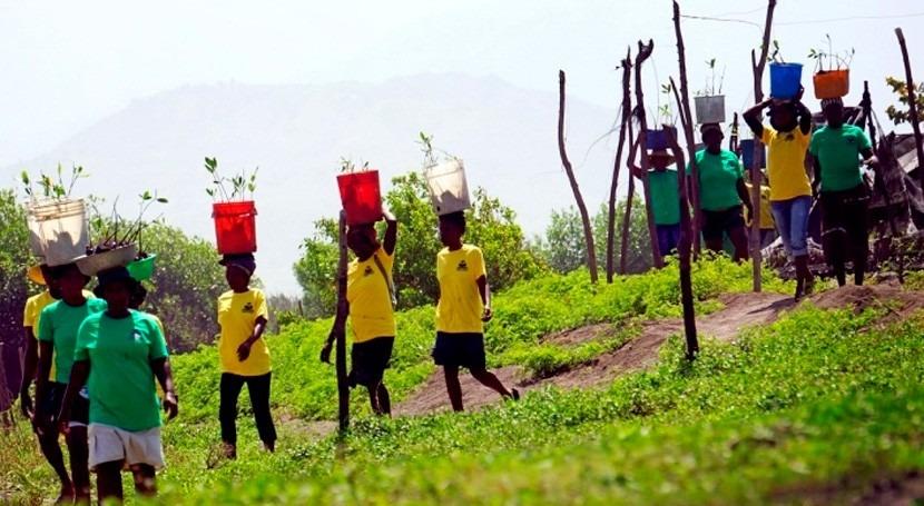 medios vida sostenibles contribuyen restaurar manglares Haití