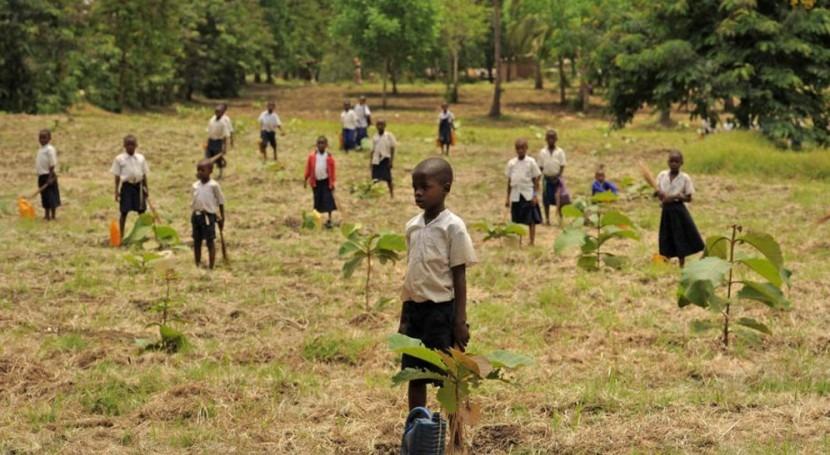 vez primera, seguridad alimentaria aparece acuerdo global cambio climático