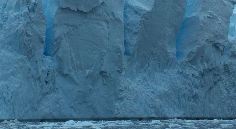 rápida acidificación aguas, grave amenaza ecosistema Antártico