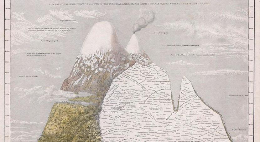 dibujo flora volcán Chimborazo hace 200 años prueba cambio climático