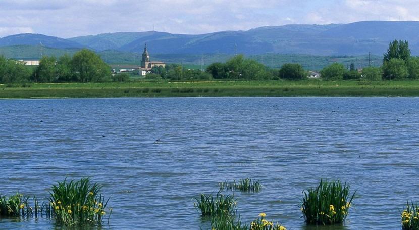 Humedal en Álava (SEO/BirdLife).