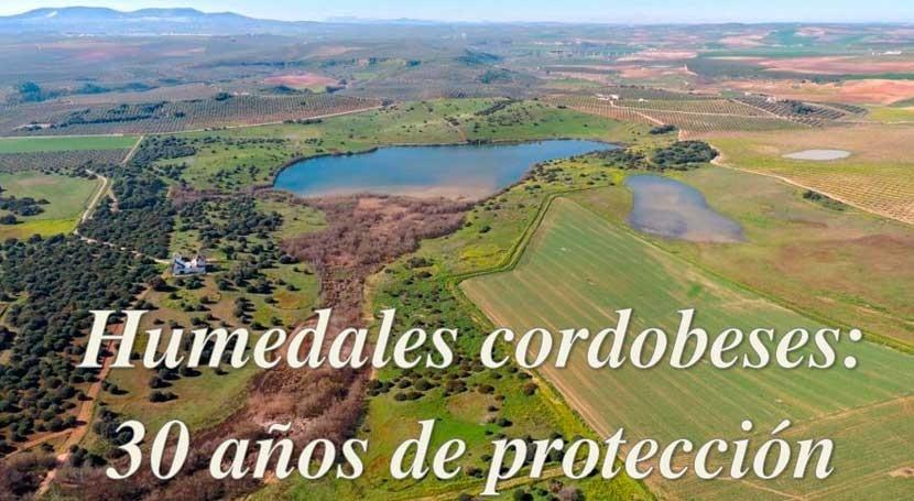 Humedales cordobeses: 30 años protección