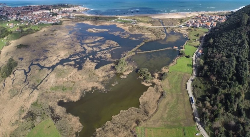restauración humedales costeros, herramienta esencial cambio climático