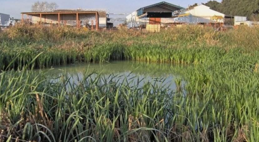 uso humedales tratamiento aguas, debate Argentina