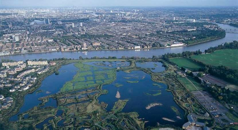 importancia humedales, debate 13ª Convención Ramsar