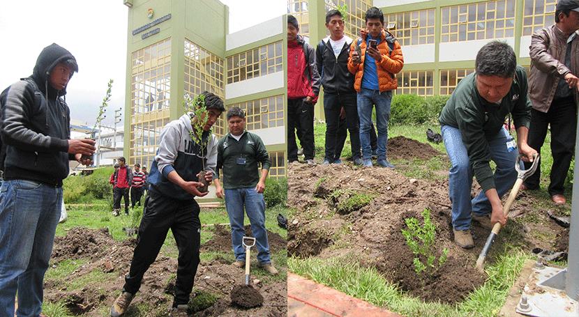 Plantan más 300 árboles campus Universidad Nacional Altiplano Puno