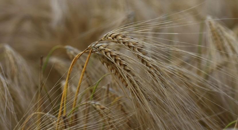 sequía España: tamaño nuestra complacencia