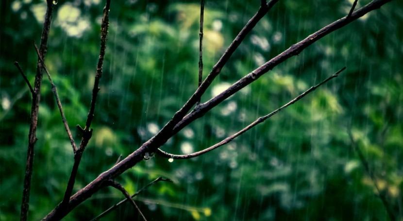 sequía: llueve mojado