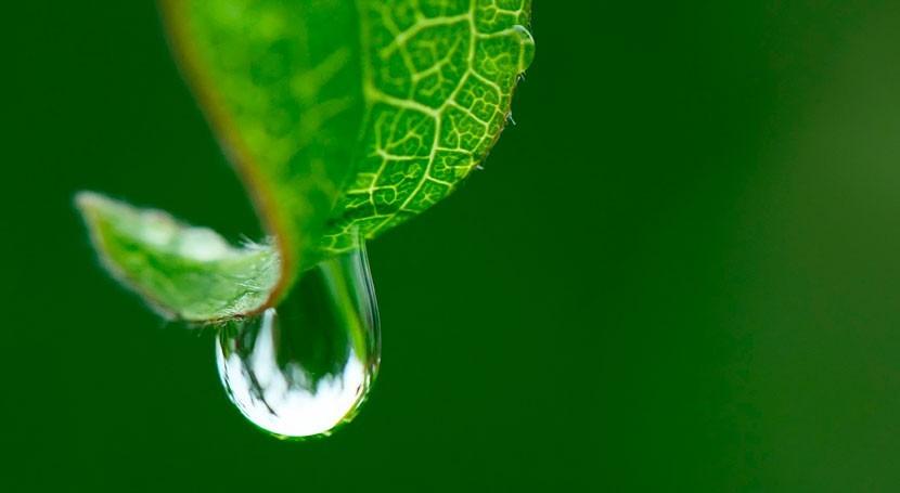 Interáguas fortalece gestión recursos hídricos Brasil