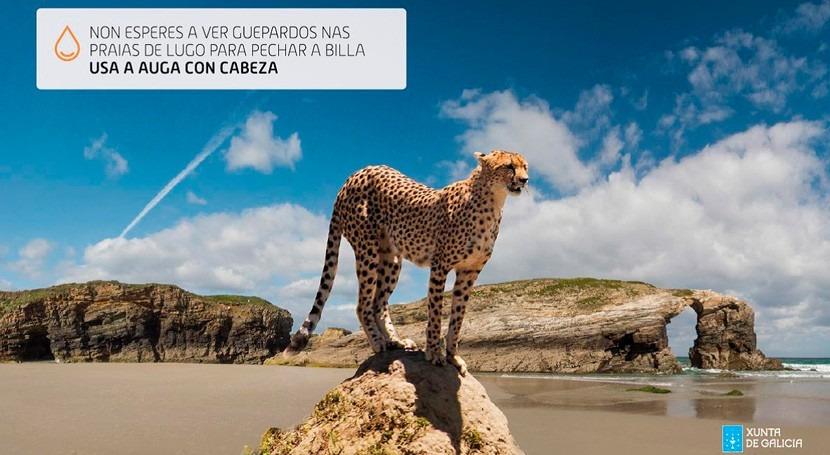 """""""Usa agua cabeza"""", campaña Galicia fomentar uso responsable"""