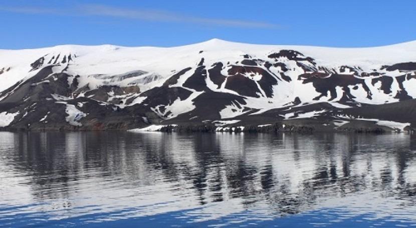 briozoos antárticos, indicadores cambios ambientales océanos