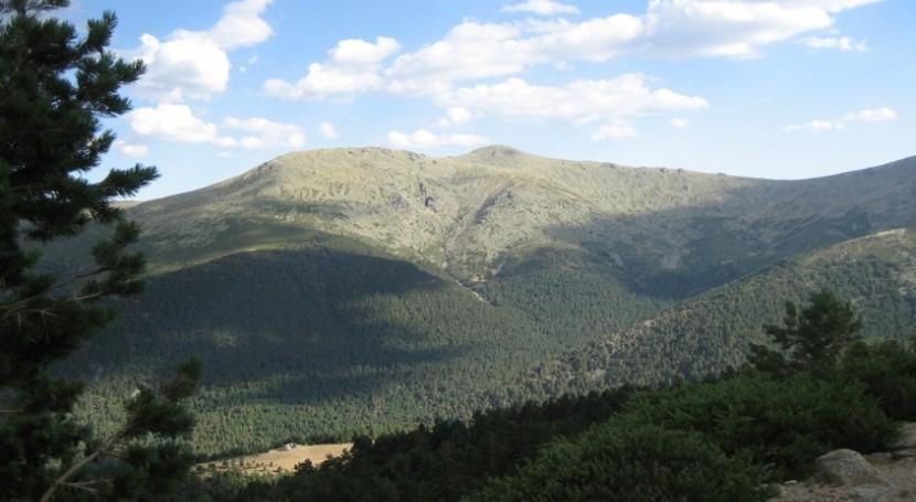¿Debería Canal Isabel II impulsar gestión forestal Sierra Guadarrama?