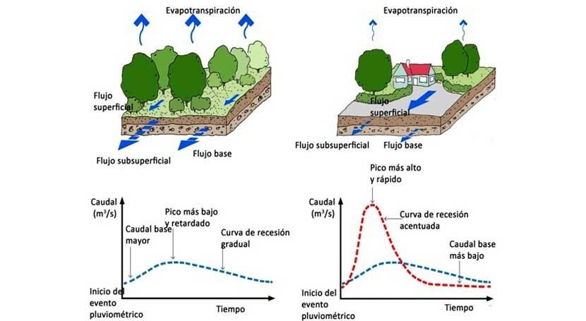 impactos urbanización ciclo agua
