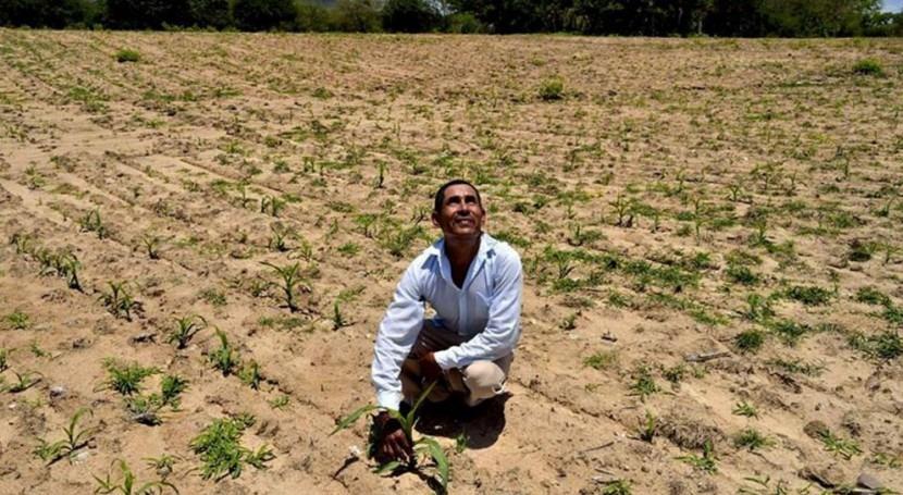 metodología IMTA determina vulnerabilidad Organismos Cuenca sequía