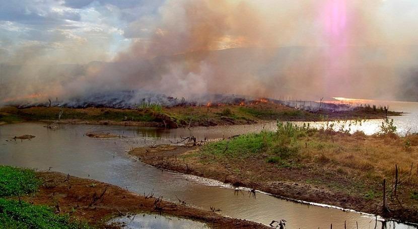 incendios Amazonia dejan rastro carbono negro río Amazonas