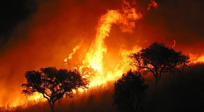 Lluvia después incendios: medidas urgentes evitar contaminación agua