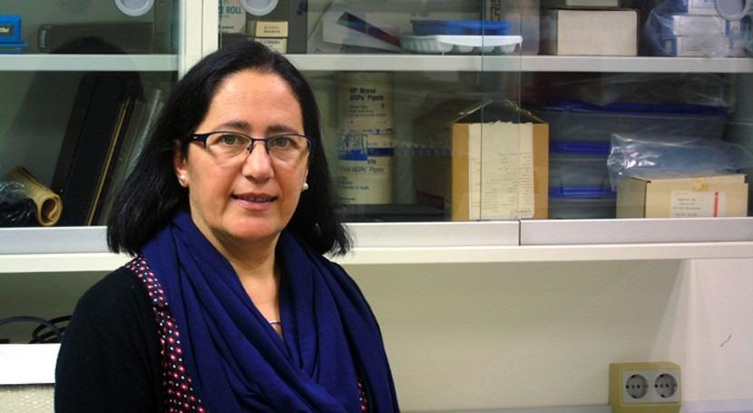 """Inmaculada Romero, nueva directora Cátedra """"Planeta y Desarrollo Sostenible"""""""