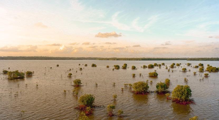 Sudáfrica suma 70 fallecidos lluvias torrenciales