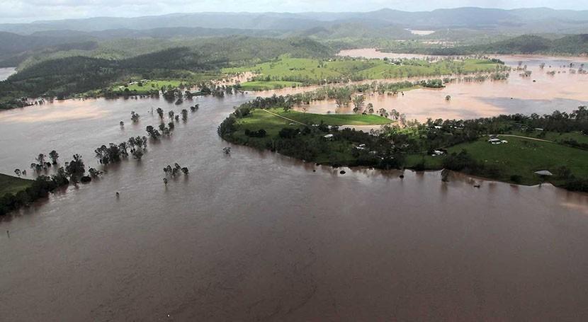 vegetación, clave calidad agua potable durante inundaciones