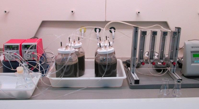 ¿Cómo recuperar gas amoniaco aguas residuales transformarlo fertilizante nitrogenado?