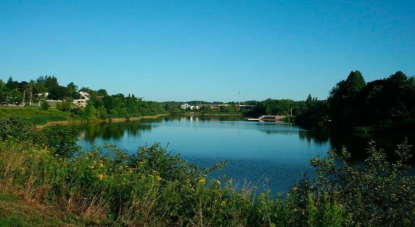 estudio muestra presencia pesticida DDT lagos 50 años después prohibición