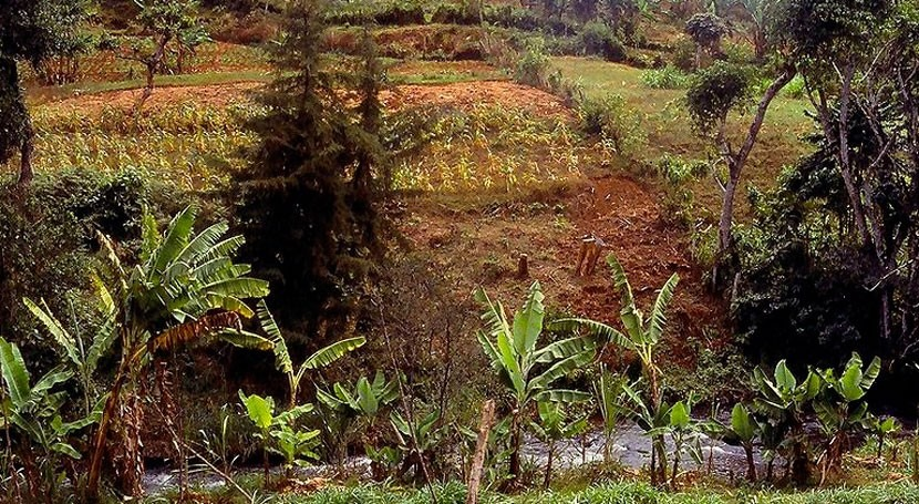 África combatirá desastres naturales 1.500 millones dólares