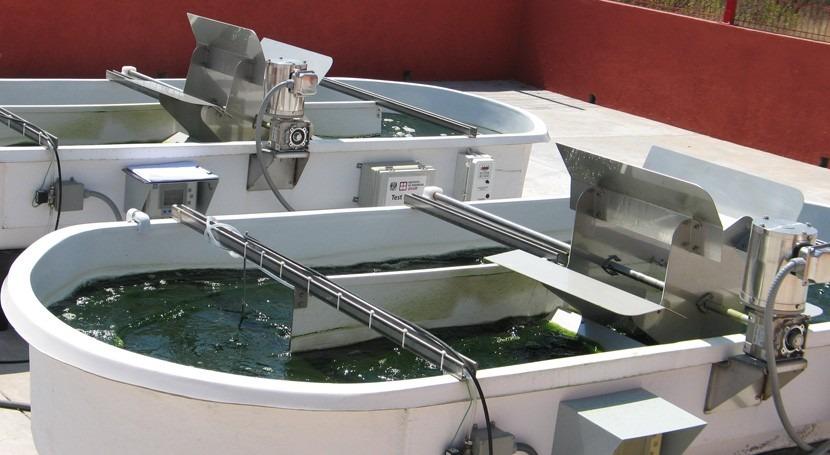 ¿Cómo producir biocombustibles partir tratamiento aguas residuales?