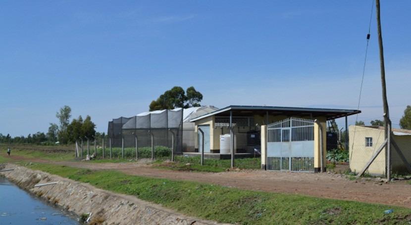 Tratamiento aguas residuales y acuicultura dar vida región lago Victoria