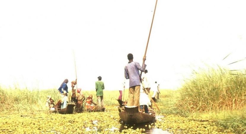 busca estrategia pobreza y cambio climático países Lago Chad