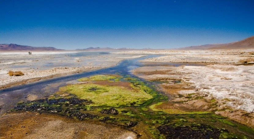 Laguna Blanca (Autor: Pedro Szekely para wikimedia)