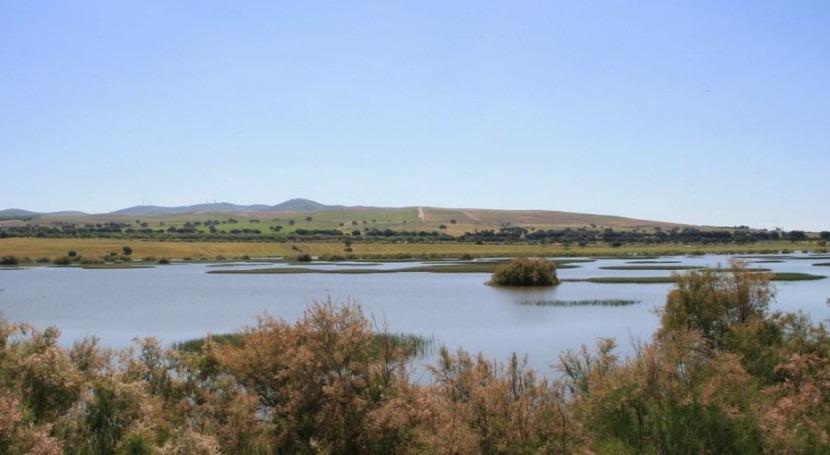 Laguna de los Tollos (LIFE Tollos)