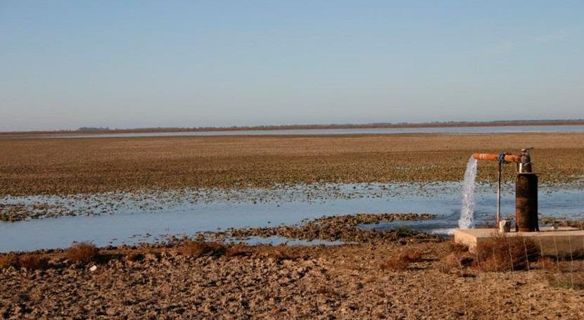 SEOBirdLife y Ecologistas piden declarar lagunas costeras hábitat peligro desaparición