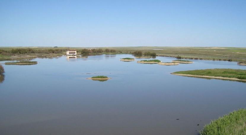 Lagunas de Villafáfila (Wikipedia/CC).
