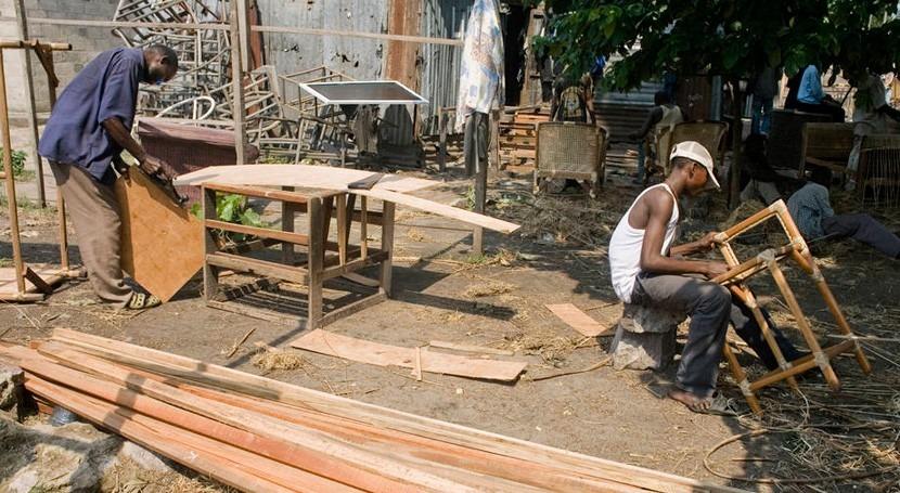¿Cómo hacen frente al cambio climático leñadores, arquitectos y carpinteros?