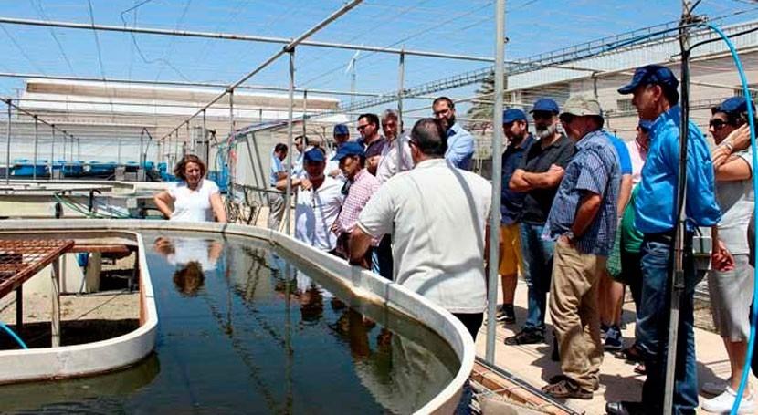 ¿Cómo disminuir impacto ambiental acuíferos afectados purines?