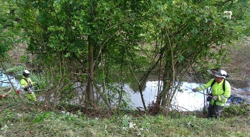 CHC inicia limpieza depósitos cauce río Alvares