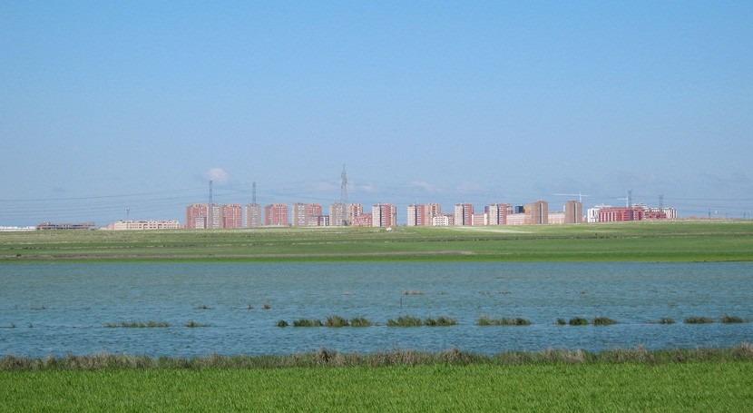 Pinto apuesta red reciclaje agua regar zonas verdes y limpiar calles 2017