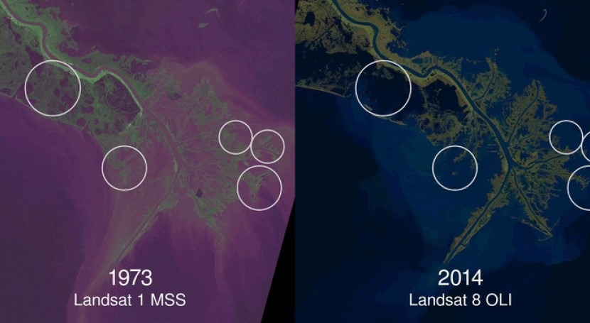 Imagen de las tierras costeras y la pérdida de humedales del delta del río Mississippi tras cuatro décadas (Landsat de USG / NASA). / Zachary Tessler
