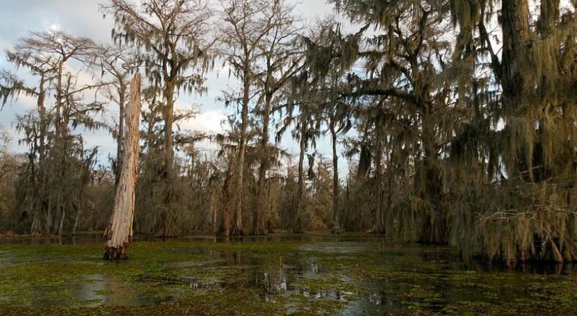 inundaciones Louisiana dejan 6 muertos