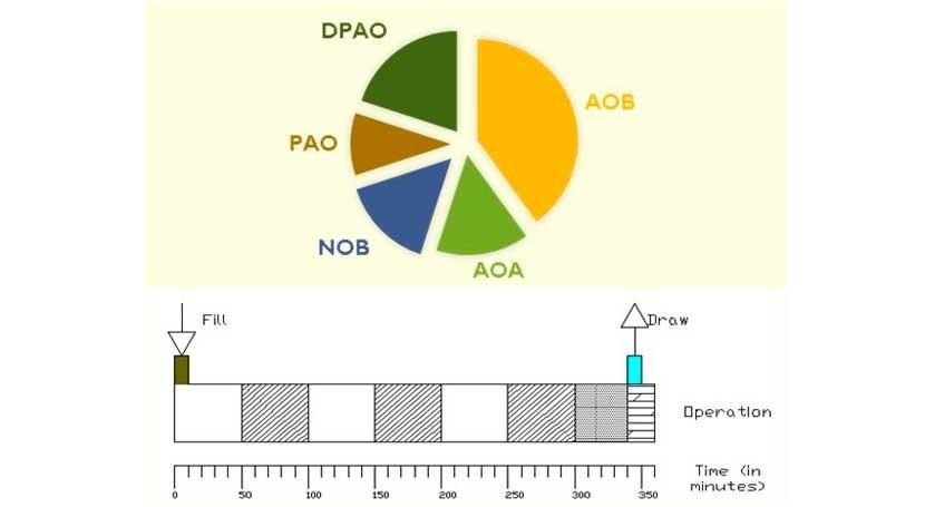 """macrófitas sistemas """"IASBR"""" tratamiento aguas residuales industriales"""